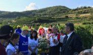 I turisti di Alassio scoprono le vigne di Leverone