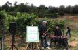 Albenga e Alassio uniti per fare del vino una esperienza turistica