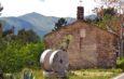 La Val Merula, oasi faunistica tra gli ulivi