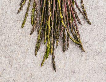 Caccia all'asparago selvatico