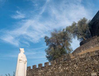 Olio e vini della Lunigiana, terra Dantesca